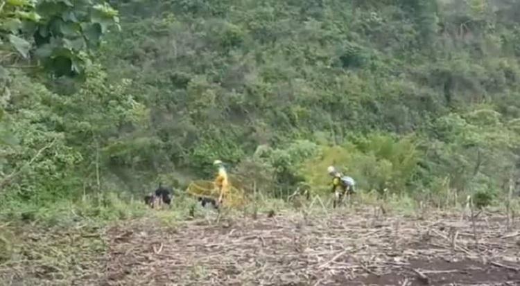 ATENTADO: Delincuentes en motocicleta lesionan y roban el arma de un agente policial