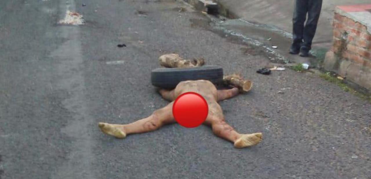 Desfiguran y matan a hombre con objetos contundentes como palos, piedras incluso con llantas - Diario Digital Cronio de El Salvador