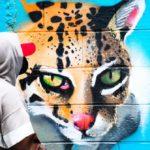 Artistas urbanos ponen su talento en recuperación de espacios públicos en Cuscatancingo